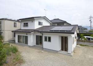 shimizu3662